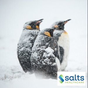 Developing Resilience Salts Healthcare