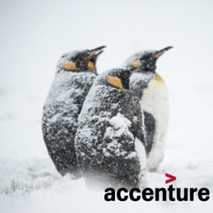 developing-resilience-accenture