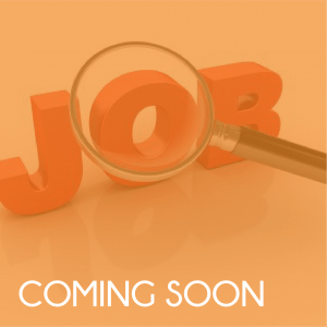 an introduction to job-hunting
