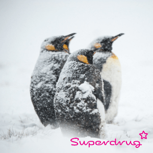 developing-resilience-superdrug